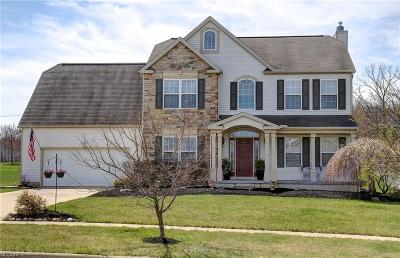 Medina County Single Family Home For Sale: 4075 Turnberry Dr