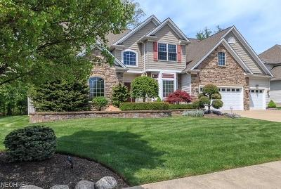 Willoughby Single Family Home For Sale: 38683 Andrews Ridge Way