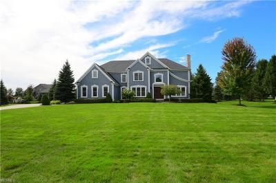 Cuyahoga County Single Family Home For Sale: 7582 Worlington Dr