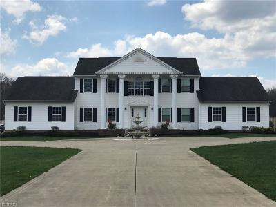 Geauga County Single Family Home For Sale: 17940 Snyder Rd