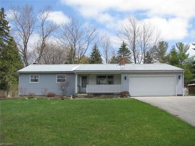 Geauga County Single Family Home For Sale: 10251 Auburn Rd