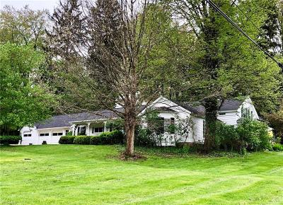 Summit County Single Family Home For Sale: 188 North Hametown Rd