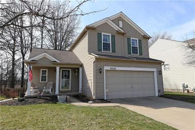 Olmsted Falls Single Family Home For Sale: 9038 Huxley Ln