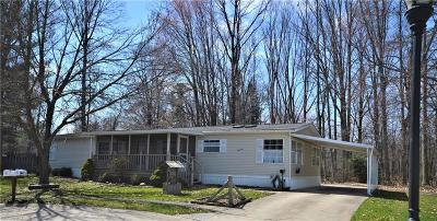 Olmsted Township Single Family Home For Sale: 14 Jessica Ln