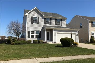 Cuyahoga County Single Family Home For Sale: 100 Falling Rock Way