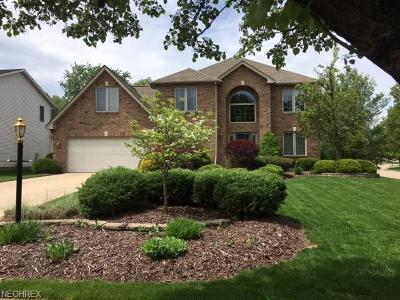 Strongsville Single Family Home For Sale: 18644 Hearthstone Dr