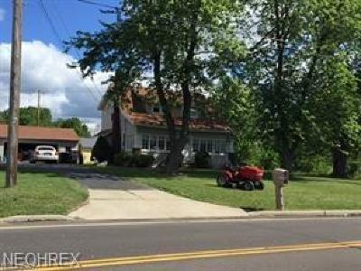 Wadsworth Single Family Home For Sale: 668 Akron Rd