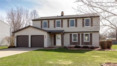 Lake County Single Family Home For Sale: 6757 Camelot Dr