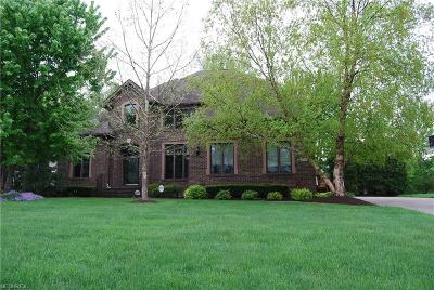 Avon Single Family Home For Sale: 33645 St Francis Dr