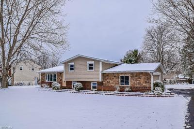 Single Family Home For Sale: 3415 Cheyenne Trl Northeast