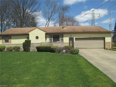Youngstown Single Family Home For Sale: 3140 Oran Dr
