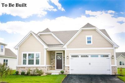Aurora Single Family Home For Sale: 135 Lakeland Way