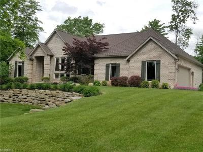 Summit County Single Family Home For Sale: 321 Mount Pleasant Rd