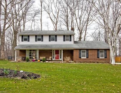 Lake County Single Family Home For Sale: 5348 Richards Dr