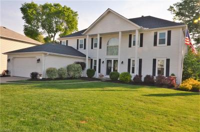 Strongsville Single Family Home For Sale: 17099 Greenwood Dr