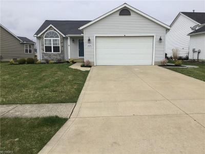 North Ridgeville Single Family Home For Sale: 38194 Misty Meadow Trl