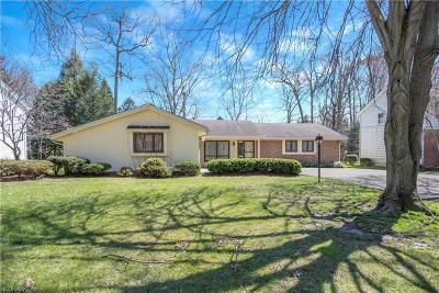 Boardman Single Family Home For Sale: 8077 Deerpath Dr