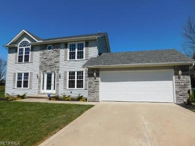 Cuyahoga County Single Family Home For Sale: 25901 Columbus Rd