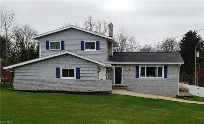 Twinsburg Single Family Home For Sale: 2450 Warren Pky