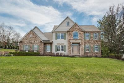 Medina Single Family Home For Sale: 4062 Fairway