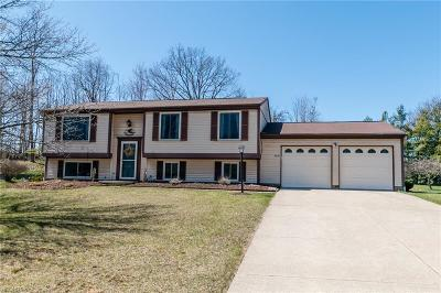 North Royalton Single Family Home For Sale: 8840 Tiffany Dr