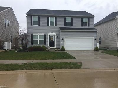 North Ridgeville Single Family Home For Sale: 38380 Noah Ln