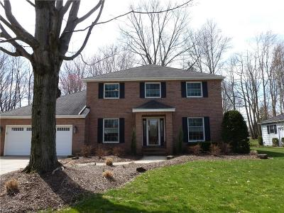 Cuyahoga County Single Family Home For Sale: 29135 Fall River Dr