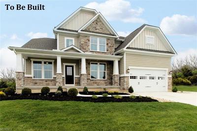 Brunswick Single Family Home For Sale: 189 Alda Pky