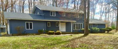 Ravenna Single Family Home For Sale: 4894 Woodview Rd