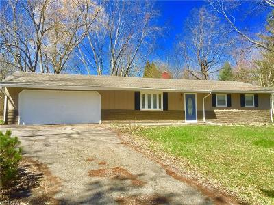 Geauga County Single Family Home For Sale: 13034 Cherry Ln
