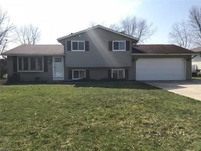 North Ridgeville Single Family Home For Sale: 6154 Denise Dr