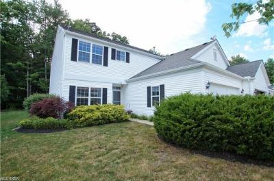 Aurora Single Family Home For Sale: 3408 Heron Ct