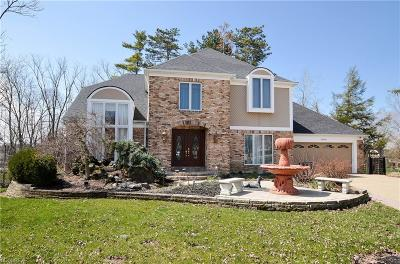 Strongsville Single Family Home For Sale: 18600 Rustic Hollow Dr