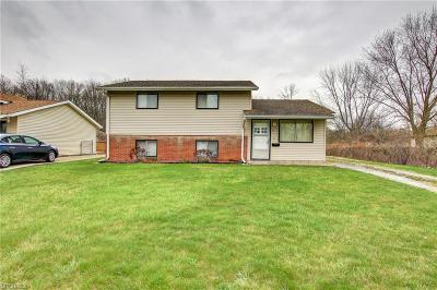 Lorain County Single Family Home For Sale: 4252 Holl Ave