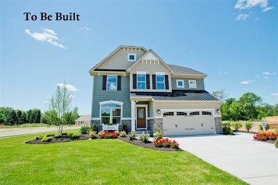 Medina Single Family Home For Sale: 258 Hooper Way