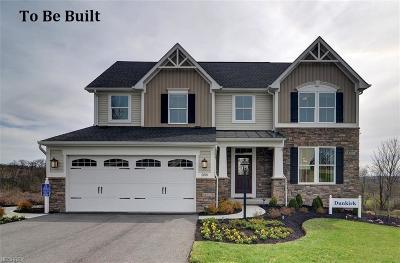 Medina Single Family Home For Sale: 262 Hooper Dr