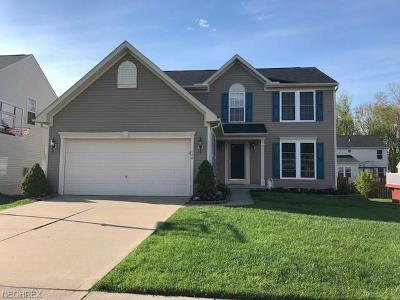 Painesville OH Single Family Home For Sale: $209,000