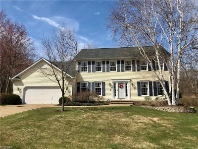 Lake County Single Family Home For Sale: 8011 Barberry Hill Dr