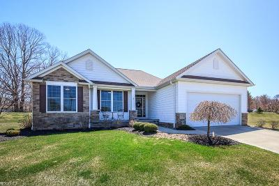 Lake County Single Family Home For Sale: 5550 Saw Grass Ct