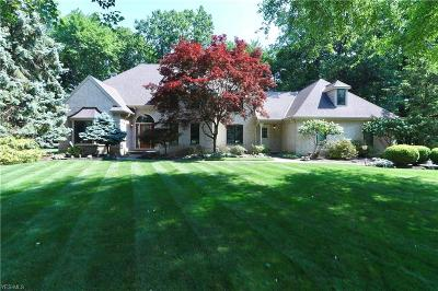 Avon Lake Single Family Home For Sale: 360 Britannia Pky