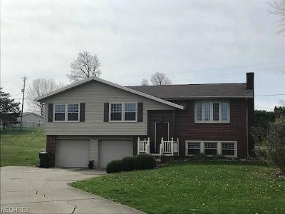Byesville OH Single Family Home For Sale: $169,900
