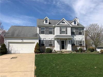 Medina Single Family Home For Sale: 1163 Continental Dr