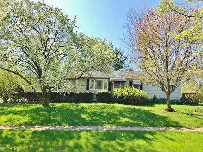 Medina Single Family Home For Sale: 8 Plymouth St