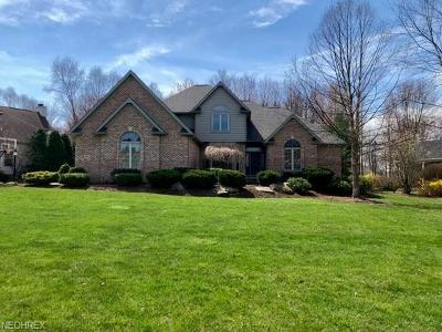 Copley Single Family Home For Sale: 353 Greensfield Ln