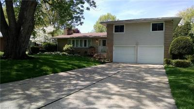 Wadsworth Single Family Home For Sale: 290 Tanglewood Trl