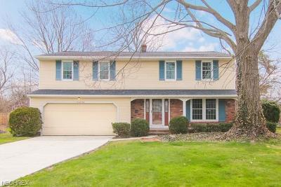 Fairview Park Single Family Home For Sale: 22225 Sycamore Dr