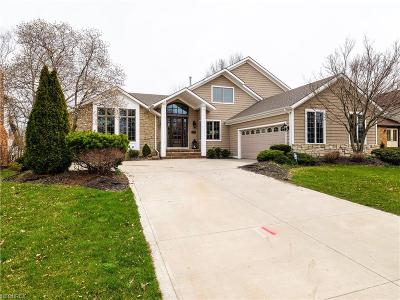 Rocky River Single Family Home For Sale: 3437 Kings Mill Run