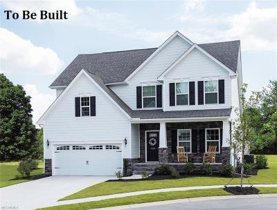 Berea Single Family Home For Sale: 251 Stone Ridge Way