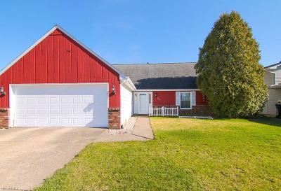 Lorain County Single Family Home For Sale: 155 Hemlock Dr