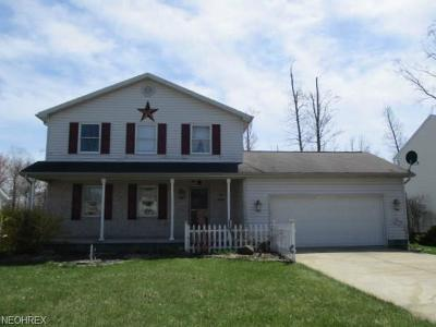 Youngstown Single Family Home For Sale: 4851 Shadow Oak Dr